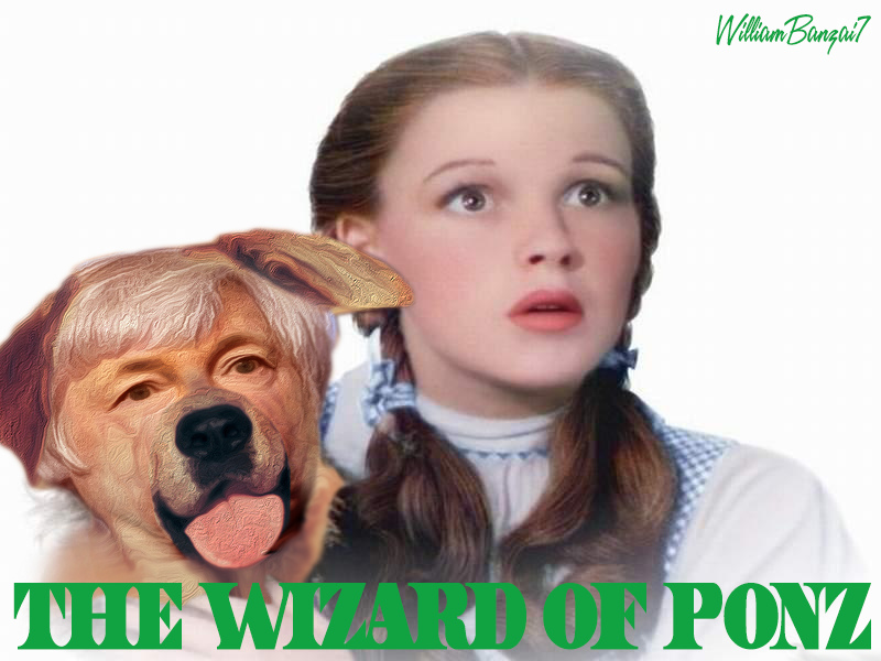 THE WIZARD OF PONZ