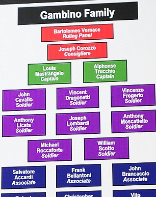 whos in charge the colour coded organisational chart shows the hierarchy of some of
